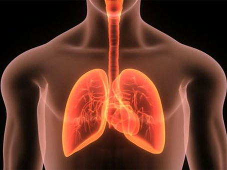New lung transplant technique could save lives: study – New Vision