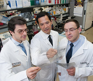 $7.3 million grant funds study of lung transplant rejection – Washington University in St. Lou