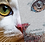 Thumbnail: Bernina upgrade van V5/6/7 naar V8 borduursoftware