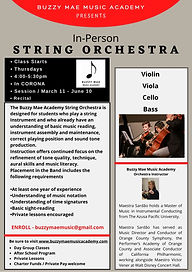 Orchestra Website.jpg