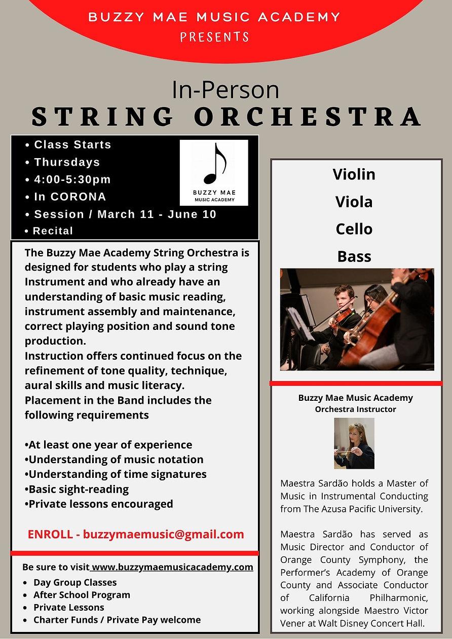Orchestra Website.jpg
