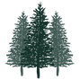 Trinity Pines Ranch Logo trees.png