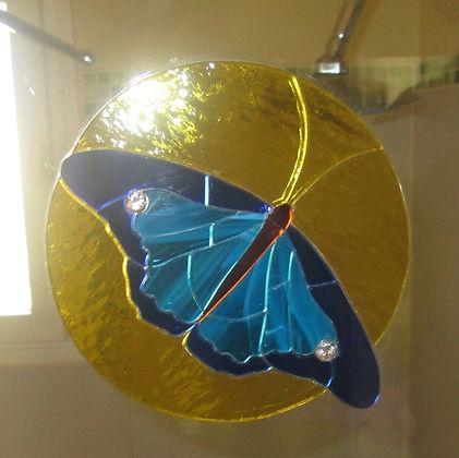 papillon colle uv.JPG