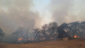 Fire-fighting Activity on the Ground