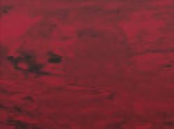 sf109 Пленка красного цвета