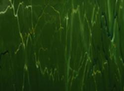Зеленые цвета пленки арт.dg021m