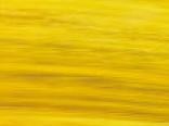 Пленка желтого цвета арт.sf502