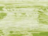 Зеленые цвета пленки арт.sf253