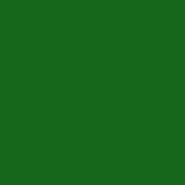Зеленые цвета пленки арт.067