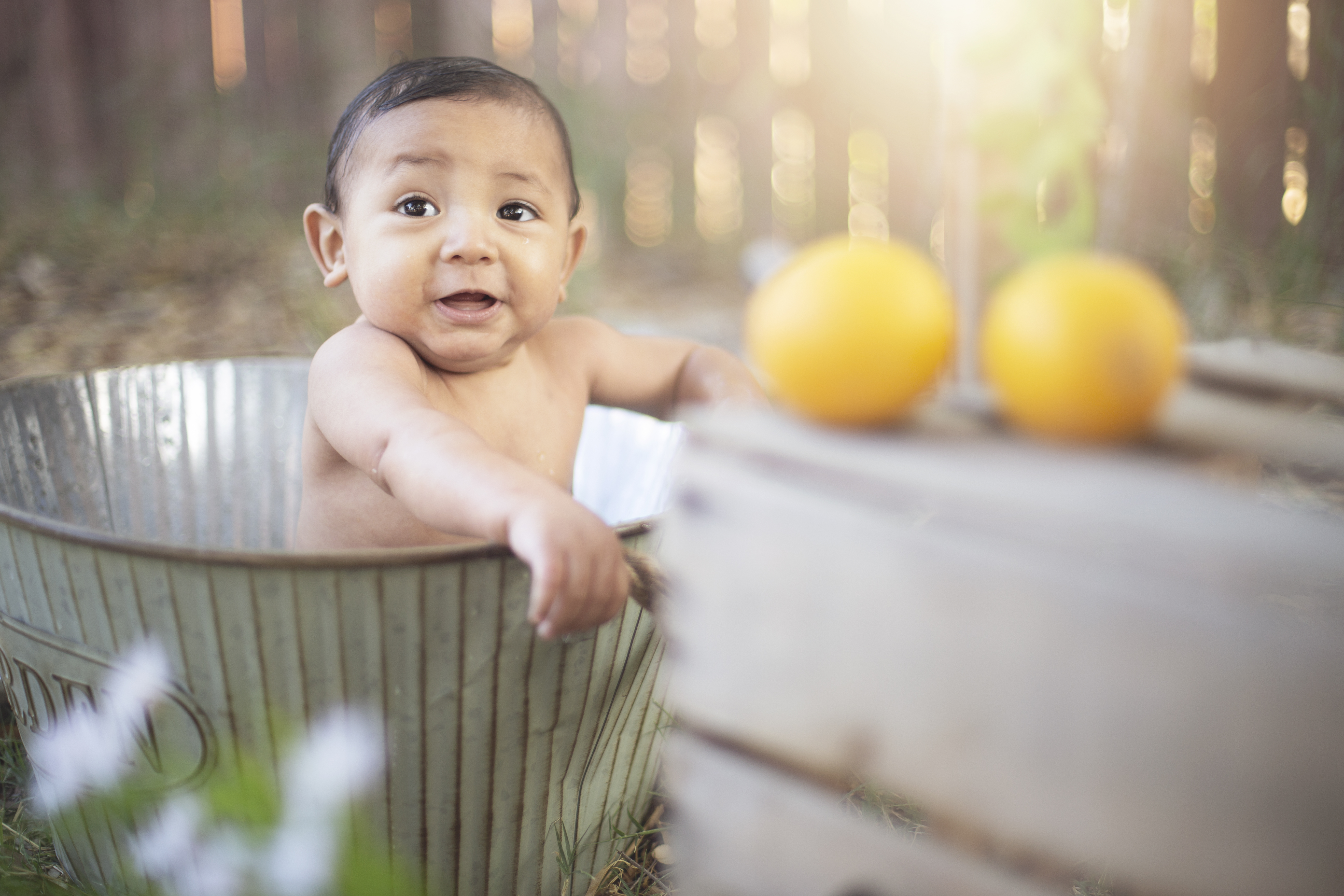 elio lemon 995