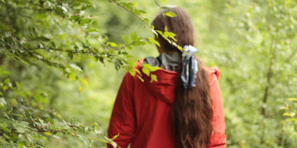 Nature Storytelling Walk