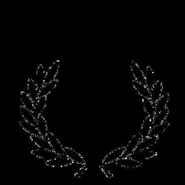 Palmes Prix du Public VR C3D NFB.png