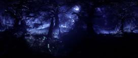 08_som_still_03385_forest_night_2K.jpg