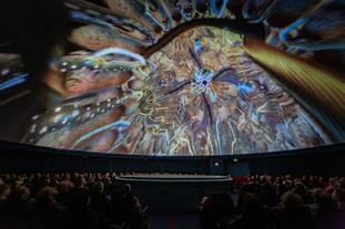 20191130NGIdfaDocLab_Planetarium#3-5(1)Â