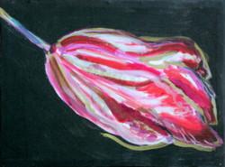 Painting.Tulip_.2015-300x223