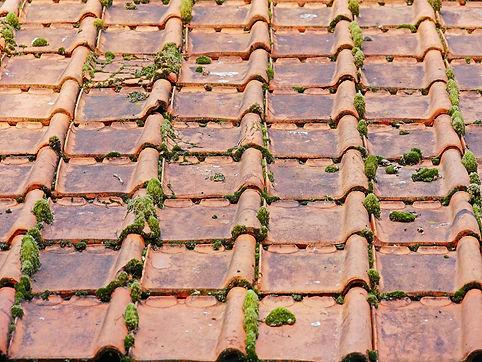 old-roof-2703949_1920.jpg