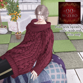 -00-Polo neck Sweater-AD1.png