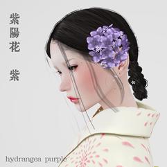 Hydrangea_head_ppl_AD.png