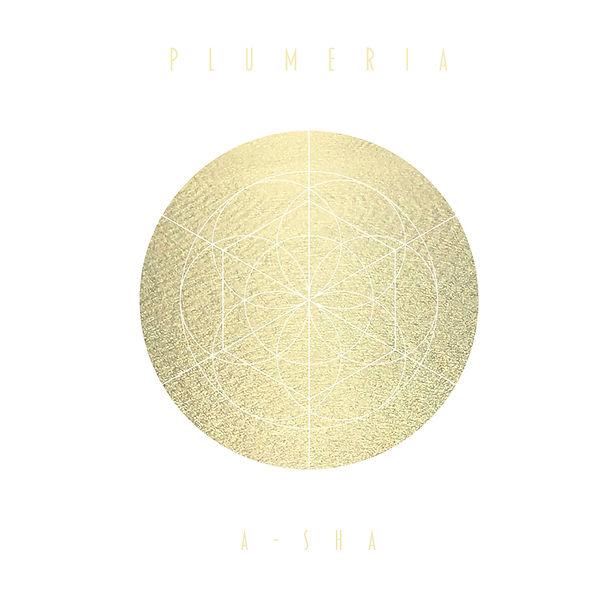 Plumeria_001 2.jpg