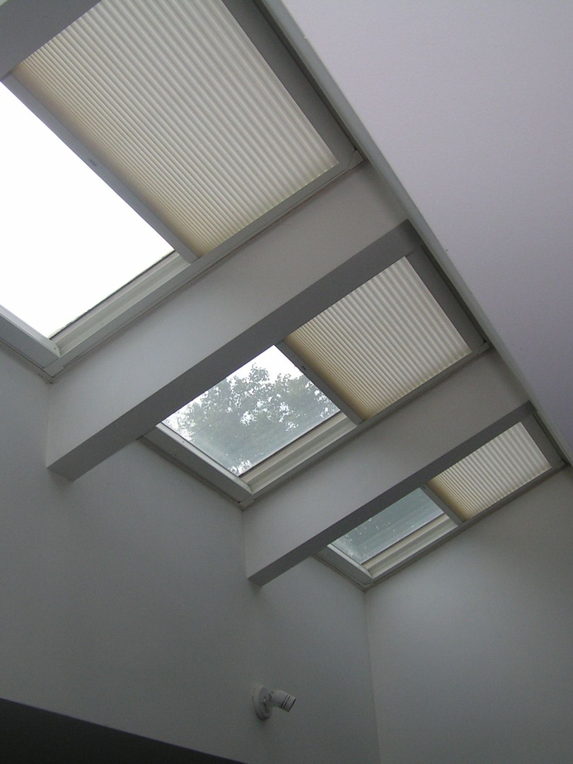 Skylight cam.jpg