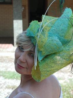 Peacock in Wagga