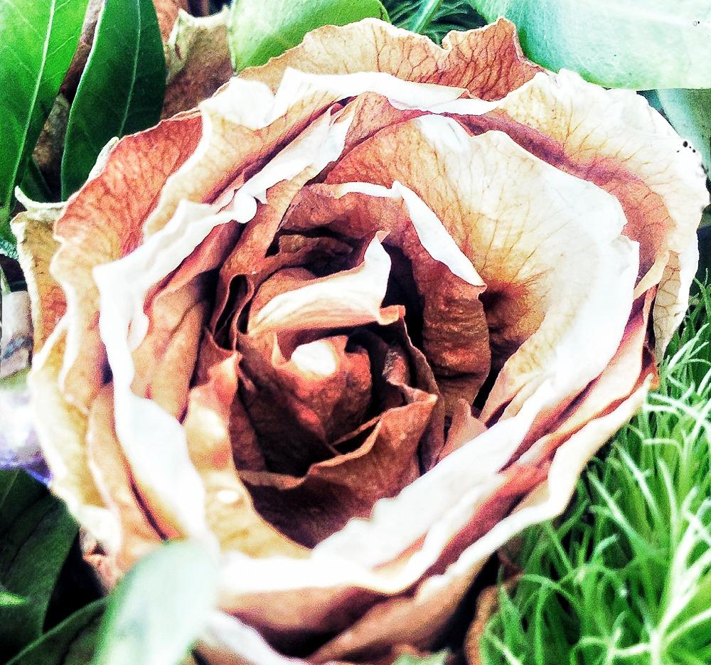 Flowery again