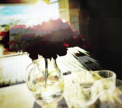 Roses in a dream