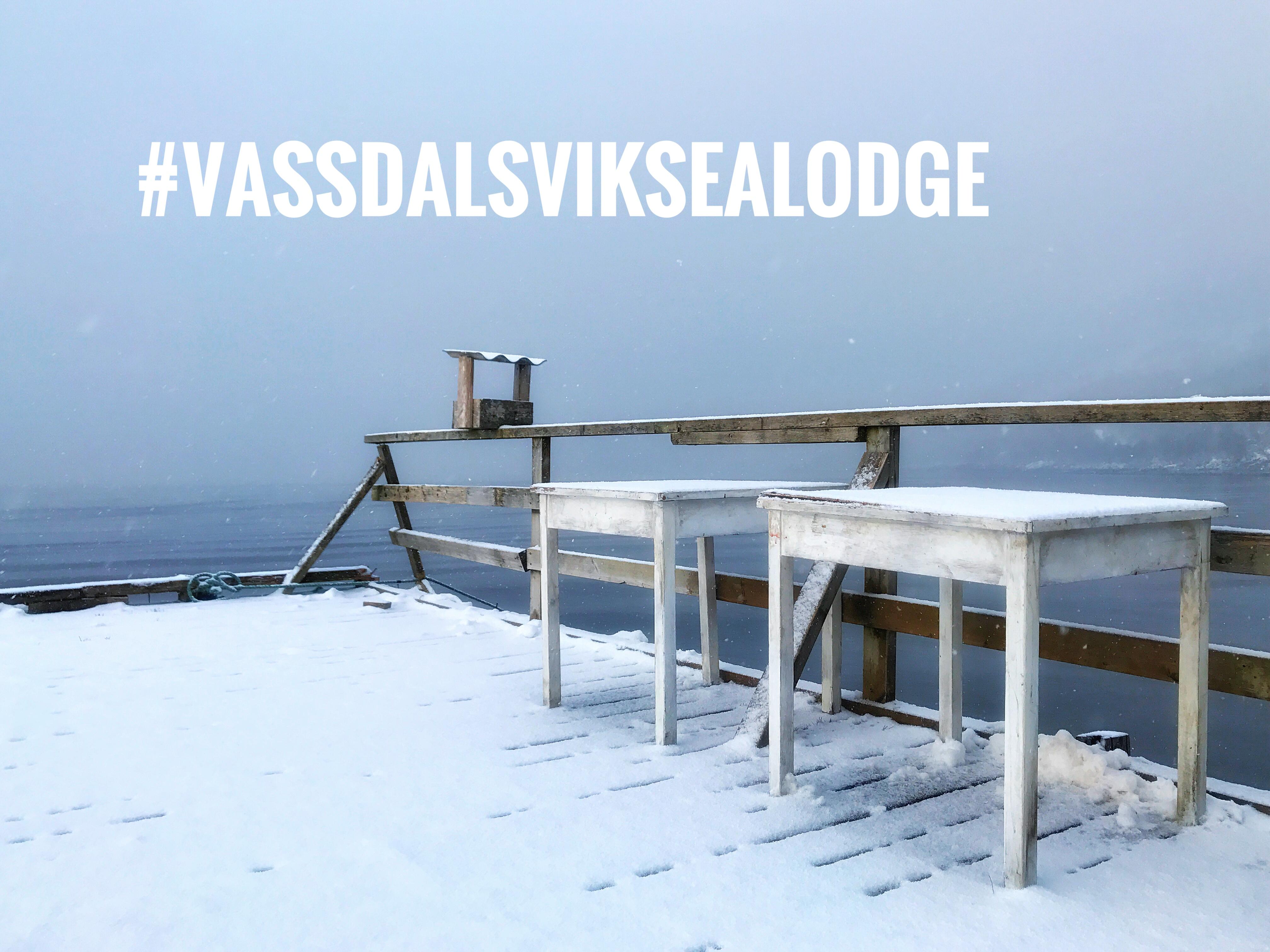 Vassdalsvik one