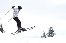 The ski jumper