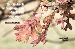 Quote four Hugh Prather