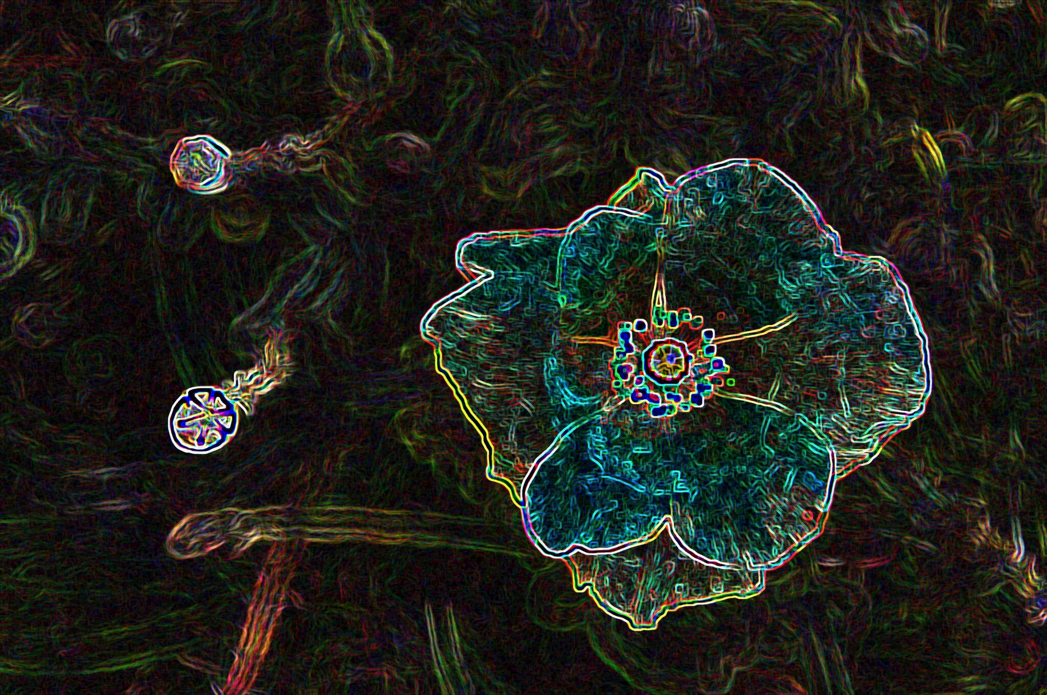Flowery one
