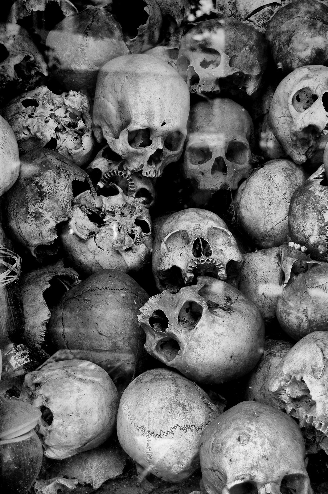 MONO - Killing Fields by Paul McCanny  (10 marks)
