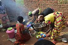 Alcis development livelihoods