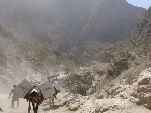 Mules, Pick-ups and Container Traffic