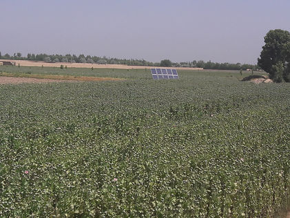 solar panel in field.jpg