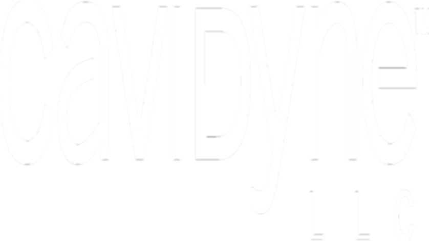 Cavidyne LLC The Safest Underwater Cleaning System