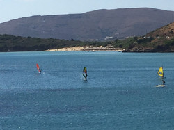 Surfers at Kypri bay