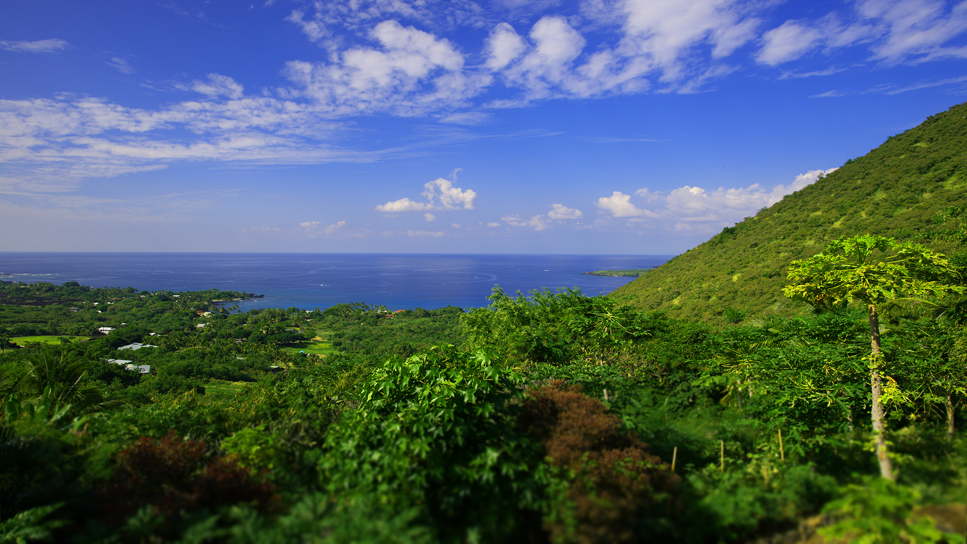 Hawaii+Yoga+Retreat+Image+1