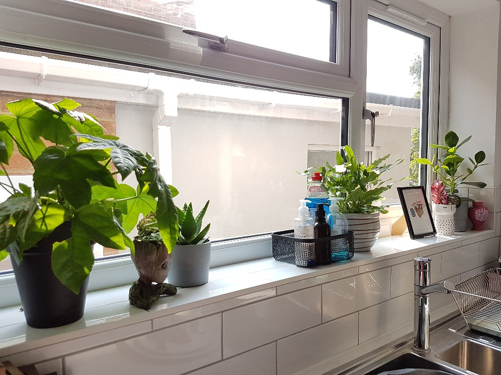 Selection of real and faux plants on the kitchen window sill at My Claybrick Home
