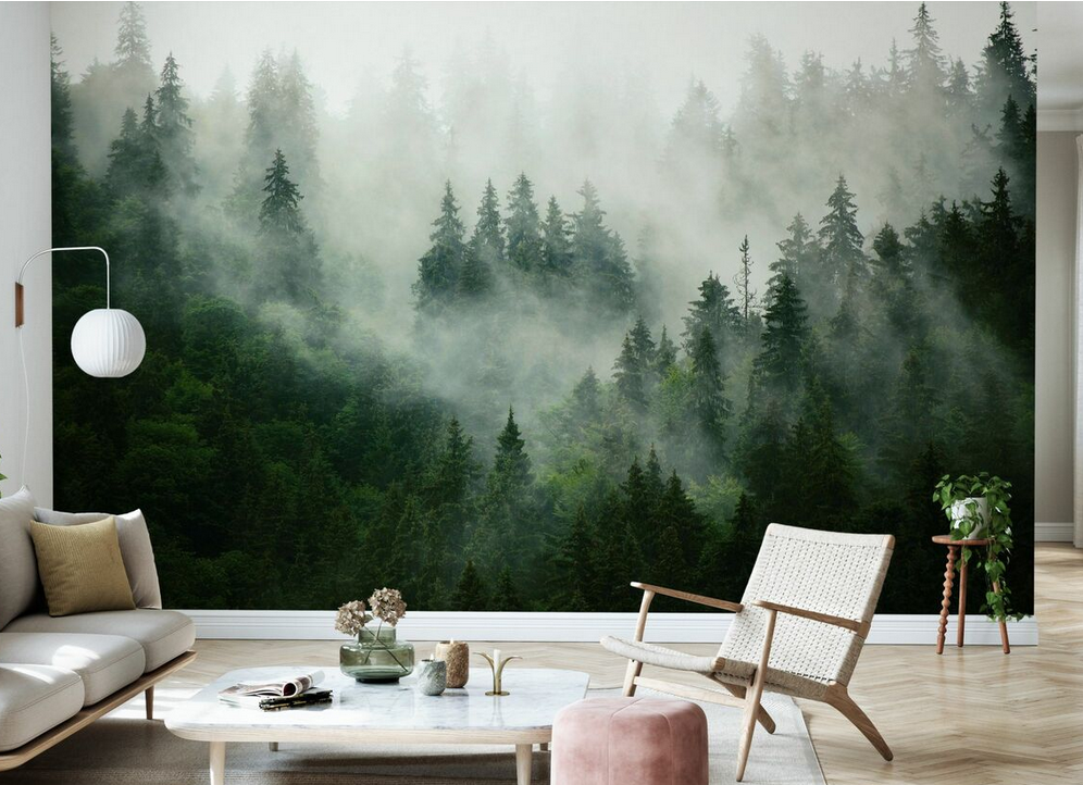 Wall mural of forest trees from photowall.co.uk