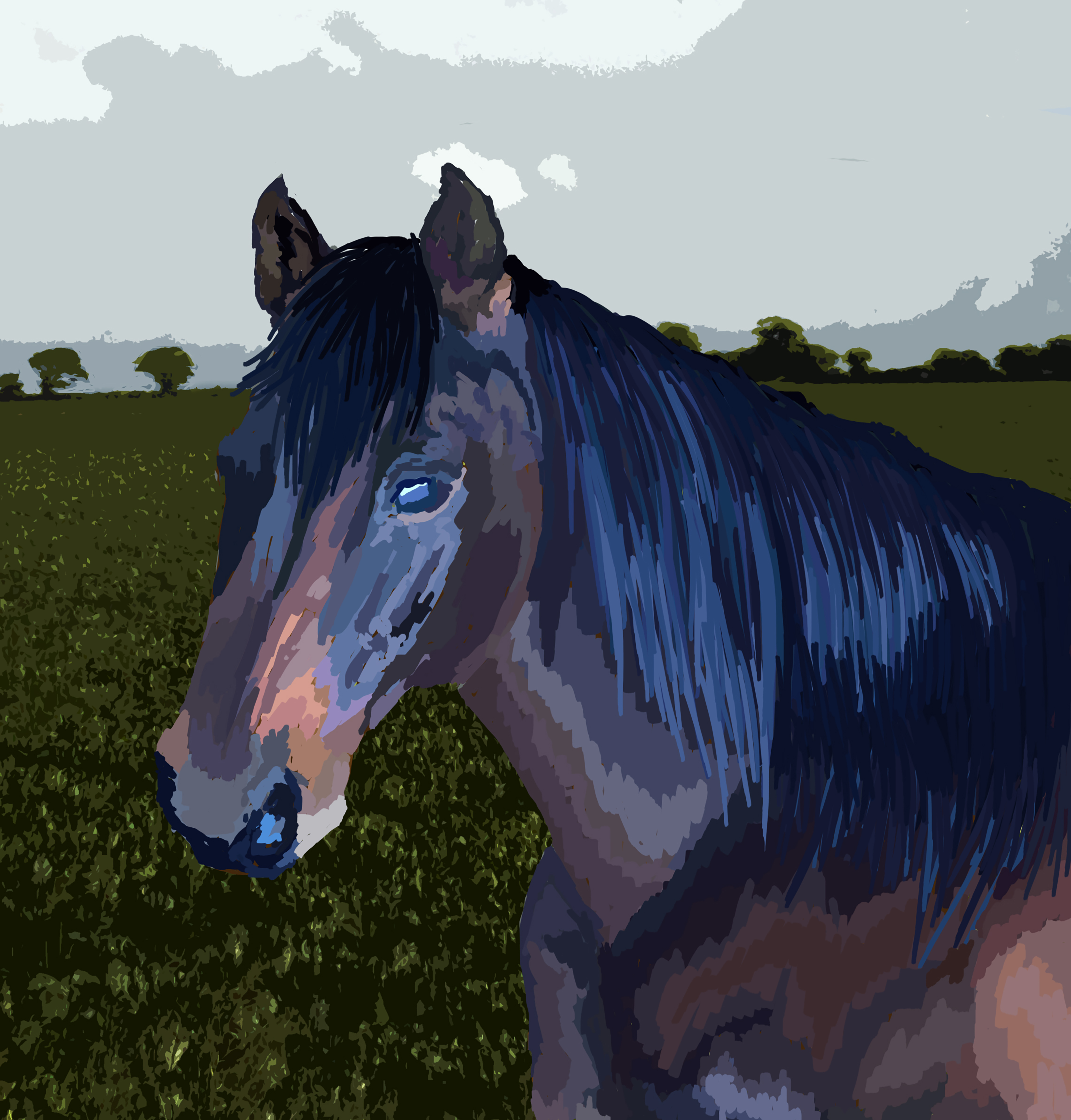 Colour pull horse - background