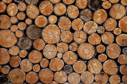 Logs Colour Card