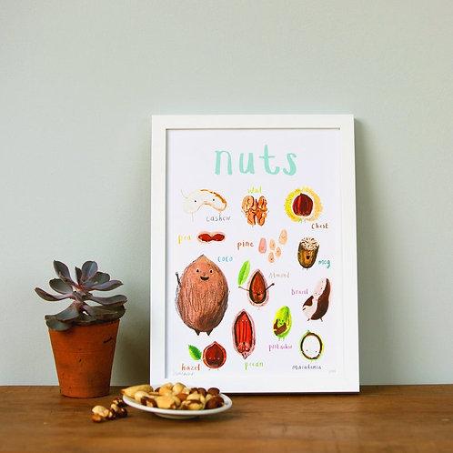 Nuts - A4 Print