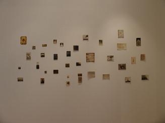 Chorus of Memory, 2007