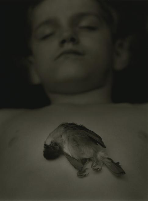 Little Sparrow, 2002