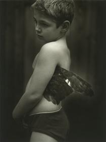 Little Bird, 2003