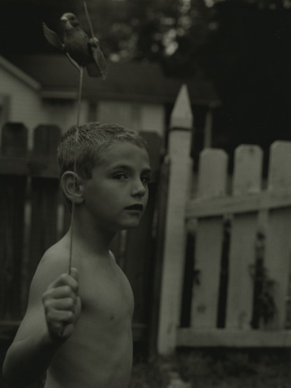 Garden Bird, 2003