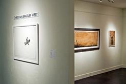 Matre Gallery, 2010