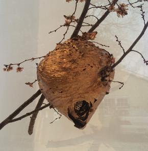 Gilded Hornet's Nest, 2015 detail