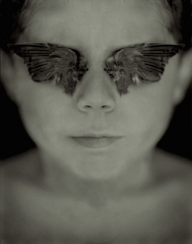 Blind My Eyes with Wings so That I Might See, 2004